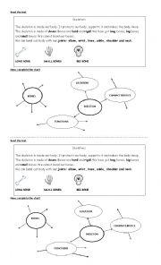 English Worksheet: Skeletons
