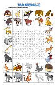 English Worksheet: MAMMALS
