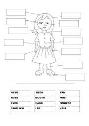 English Worksheet: Label Body Parts
