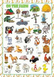 English Worksheet: On the Farm Picture Dictionary