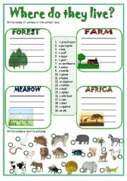 English Worksheet: Where do they live?