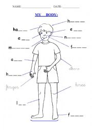 English Worksheet: My Body
