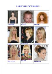HAIRSTYLES PICTIONARY 1