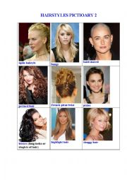 HAIRSTYLES PICTIONARY 2