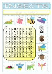 English Worksheet: Insects Wordsearch