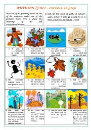 English Worksheet: AUTUMN/FALL - IDIOMS & SAYINGS (with key)