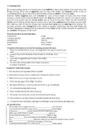 English Worksheet: a cleaning lady
