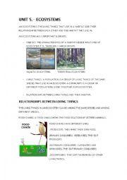 English Worksheet: ECOSYSTEMS. SUMMARY