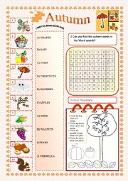 English Worksheet: Autumn