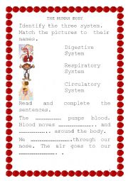 English Worksheet: Circulatory System Respiratory System and Digestive System