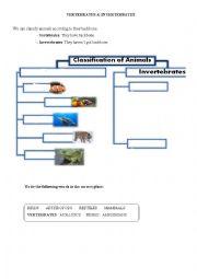 English Worksheet: Sorting animals: vertebrates/ invertebrates