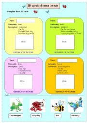 English Worksheet: ID cards of some instects