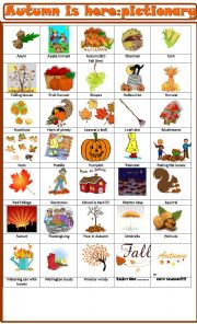 Autumn is here: pictionary