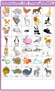 English Worksheet: Animals, pets and others :pictionary 2
