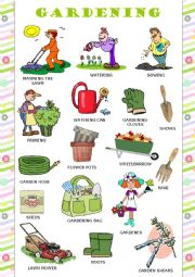 English Worksheet: Gardening - Pictionary