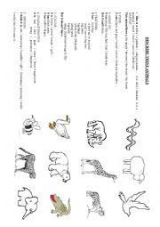DESCRIBING ANIMALS
