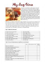 English Worksheet: Reading My dog Gina