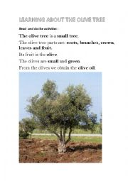 English Worksheet: The olive tree information  (part 1)