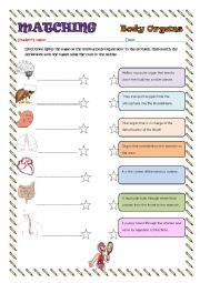 English Worksheet: BODY ORGANS (INTERNAL)