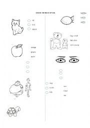 English Worksheet: Vocabulary with pictures ( fruits, adjectives, animals, verbs)