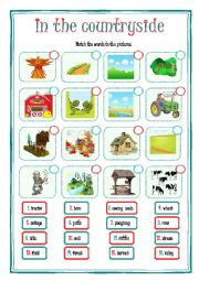English Worksheet: IN THE COUNTRYSIDE