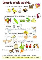 English Worksheet: Reading-comprehension. Domestic animals and birds.