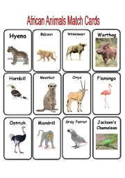 African Animal Match Cards