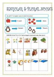 English Worksheet: SINGULAR AND PLURAL NOUNS- INDEFINITE ARTICLE
