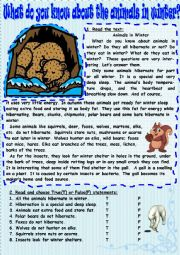 English Worksheet: What do you know about the animals in winter?
