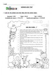 English Worksheet: science mini test on animals