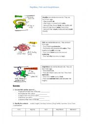 English Worksheet: Reptiles, Fish and Amphibians