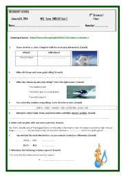 English Worksheet: Mid - term test 2 third form
