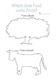 English Worksheet: Food comes from animals or plants?