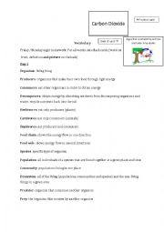 English Worksheet: Ecosystems Vocabulary