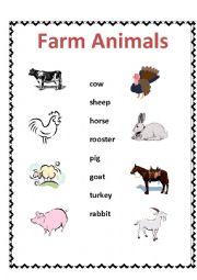 English Worksheet: Farm animals - matching activity