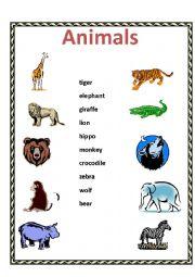English Worksheet: Animals - matching activity