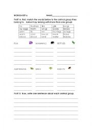 English Worksheet: Animal classification and sentences
