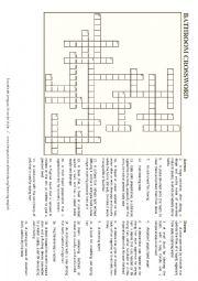 The house: the bathroom - crossword