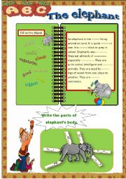 English Worksheet: the elephant