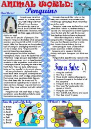 English Worksheet: Animal World: Penguins