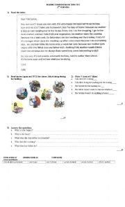 English worksheet: Reading Comprehension Test