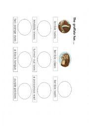 English Worksheet: Gruffalo body parts