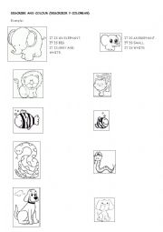 English Worksheet: ANIMALS + BIG and SMALL + COLOURS