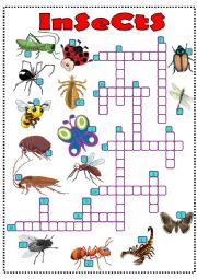 English Worksheet: insects crossword
