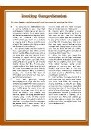English Worksheet: Reading Comprehension Test