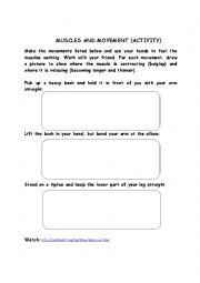 English Worksheet: Muscles & Movement