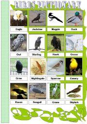 English Worksheet: Birds. Pictionary. Part I (Reuploaded)