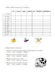 English Worksheet: animals groups: mammals/reptiles/amphibians/birds/vertebrates/fish/invertebrates ...