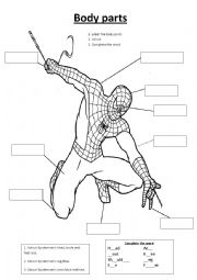 English Worksheet: Spiderman body parts