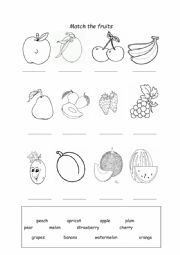 Fruits Worksheet